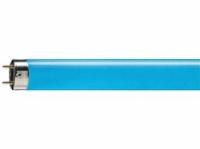 TL-D kleur blauw