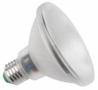 Vervangt E27 PAR30 75 watt halogeen