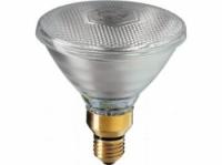 persglaslamp PAR38
